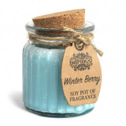 2 x Winter Berry Soy Pot of...